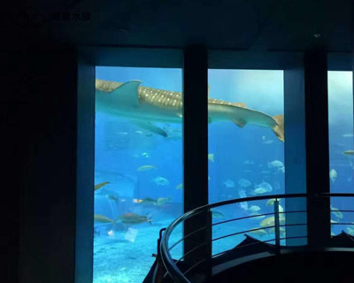 大型鱼缸制作厂家-上海海奥大型鱼缸制作厂家
