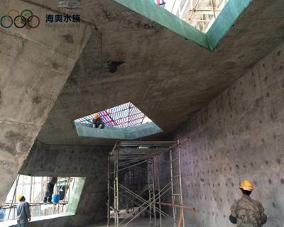 大理海洋馆施工现场-上海海奥水族馆