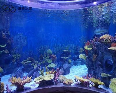大理海洋馆造景-上海海奥水族馆