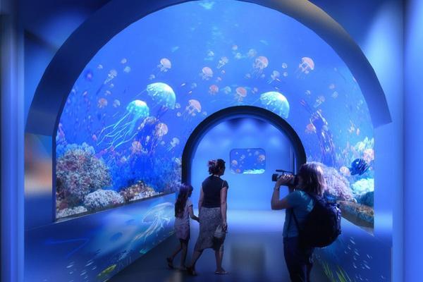海洋馆地下部分效果图