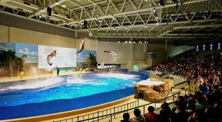 热博潜水池南昌万达海洋乐园